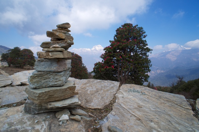 Stone pile, Annapurna and Rhodedendron Tree
