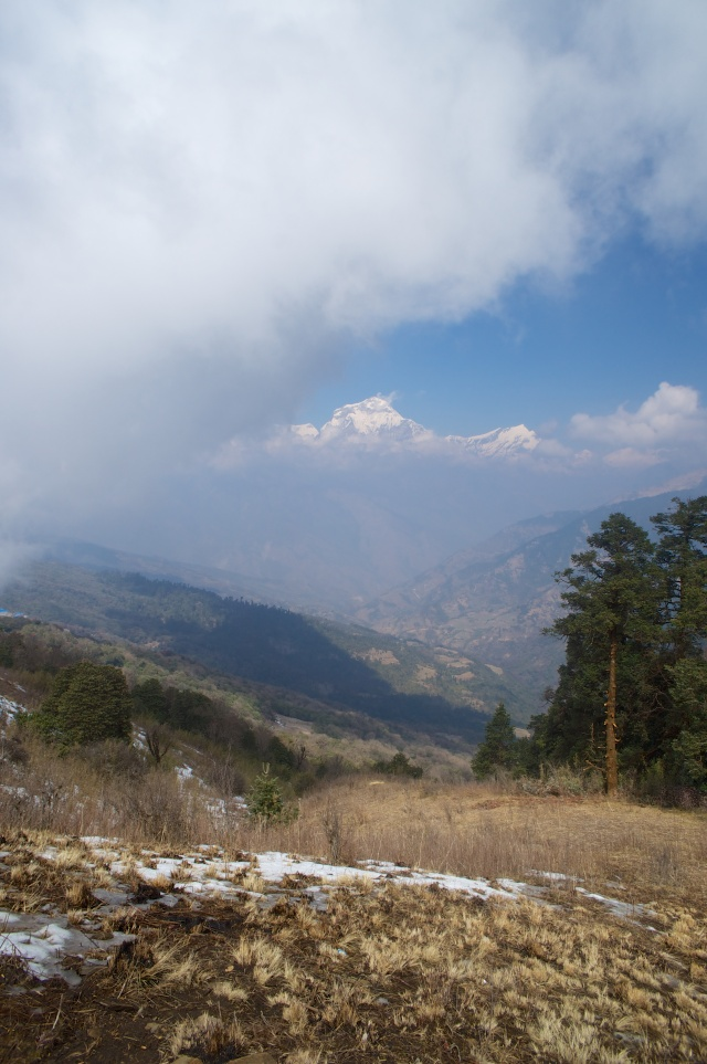 View from 1320m